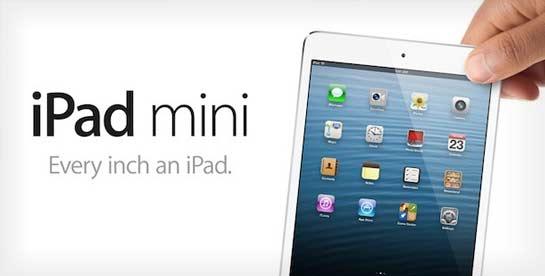 Apple iPad Mini Official Graphic